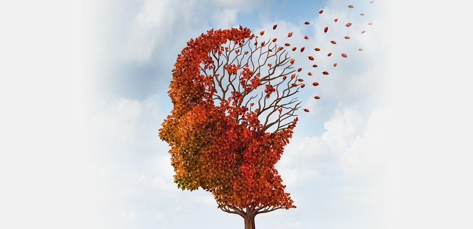 Paura di Perdersi. Conoscere la malattia di Alzheimer tra scienza medica, libri, film e testimonianze. - See more at: http://www.demaison.it/site/2016/03/05/paura-di-perdersi-conoscere-la-malattia-di-alzheimer-tra-scienza-medica-libri-film-e-testimonianze